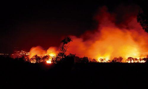 SPMI solidariza-se com vítimas de incêndios