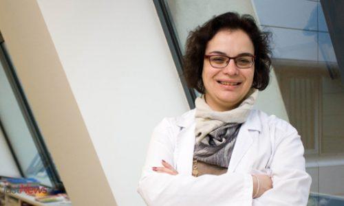 Diabetes no hospital: Internistas vão «assumir o papel de doentes» e atualizar conhecimentos