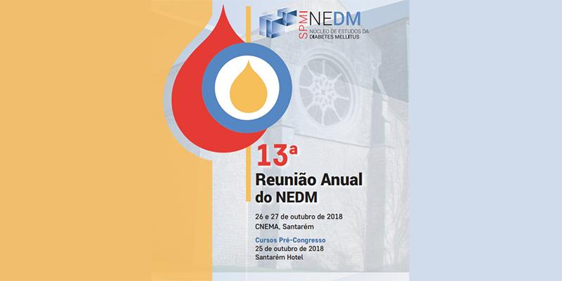 13ª Reunião Anual do NEDM