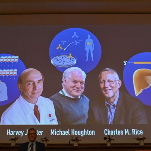 Prémio Nobel da Medicina para os descobridores do vírus da Hepatite C